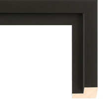 Black Panel Floater Frame
