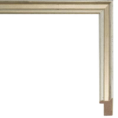 Photo Picture Poster Frame Modern Flat Brushed Finish Wide Modling Large Frames
