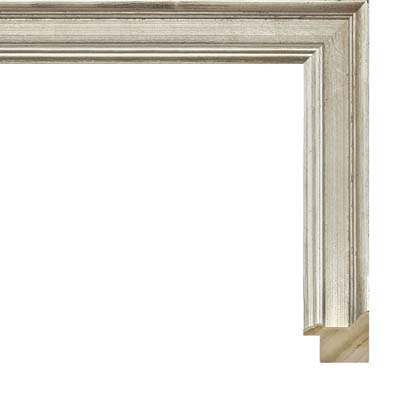 2346bee05522 Simple Silver Picture Frame